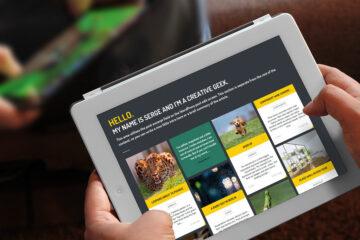 site web vitrine expert stark